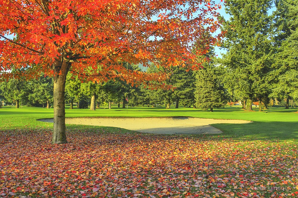 Autumn Golf by imarkimages