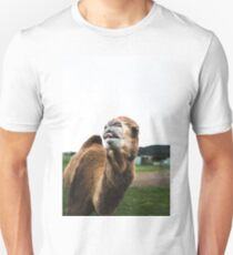 Silly Camel Unisex T-Shirt