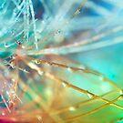 Technicolor Cactus.  by Sherstin Schwartz