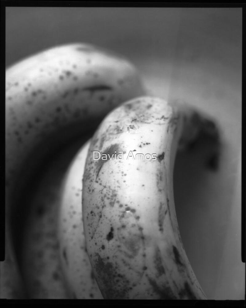 Bananas by David Amos