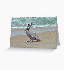 Brown Pelican - Pelecanus occidentalis Greeting Card