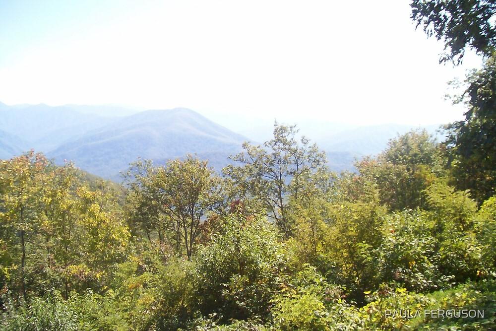Tennessee Mountain by PAULA FERGUSON