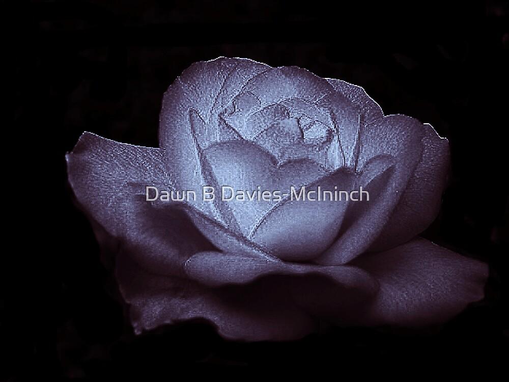 Lavender Glow by Dawn B Davies-McIninch
