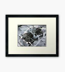 Vine #8 Framed Print