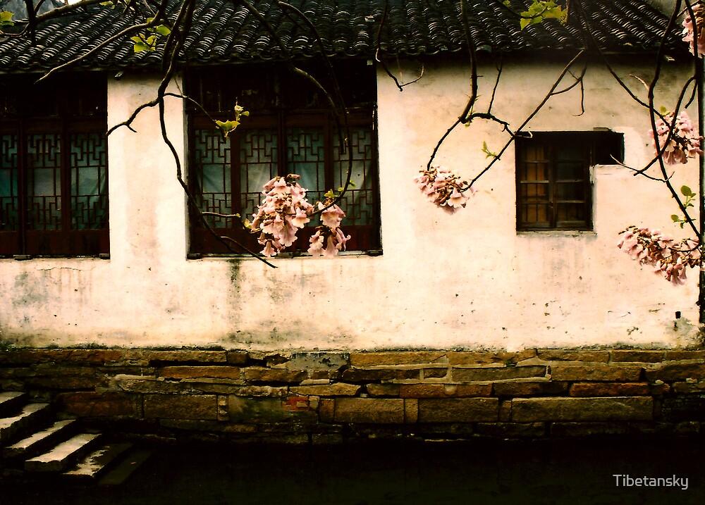 Zhouzhuang village, southern China by Tibetansky