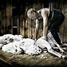 The Shearer von Jenni Horsnell