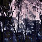 Lightyears by Kitsmumma