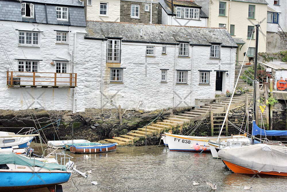 Harbour Steps at Polperro by Catherine Hamilton-Veal  ©