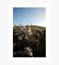 lighthouse & flowers Art Print