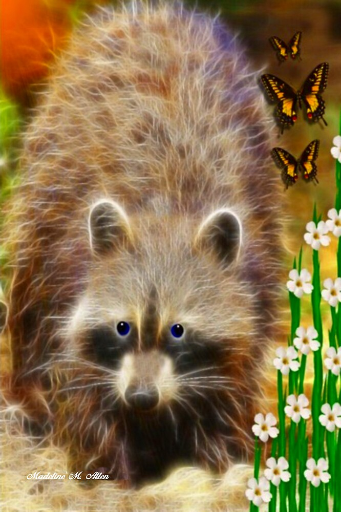 ~ RICKY RACCOON ~ by Madeline M  Allen