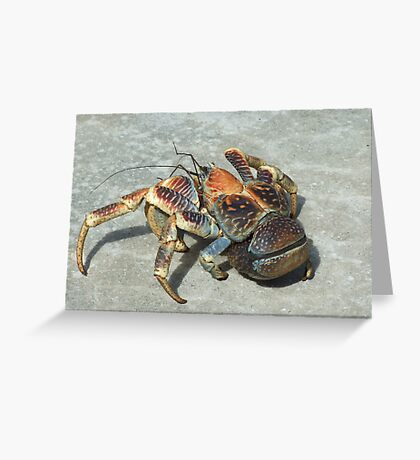 Robber Crab - Christmas Island Greeting Card