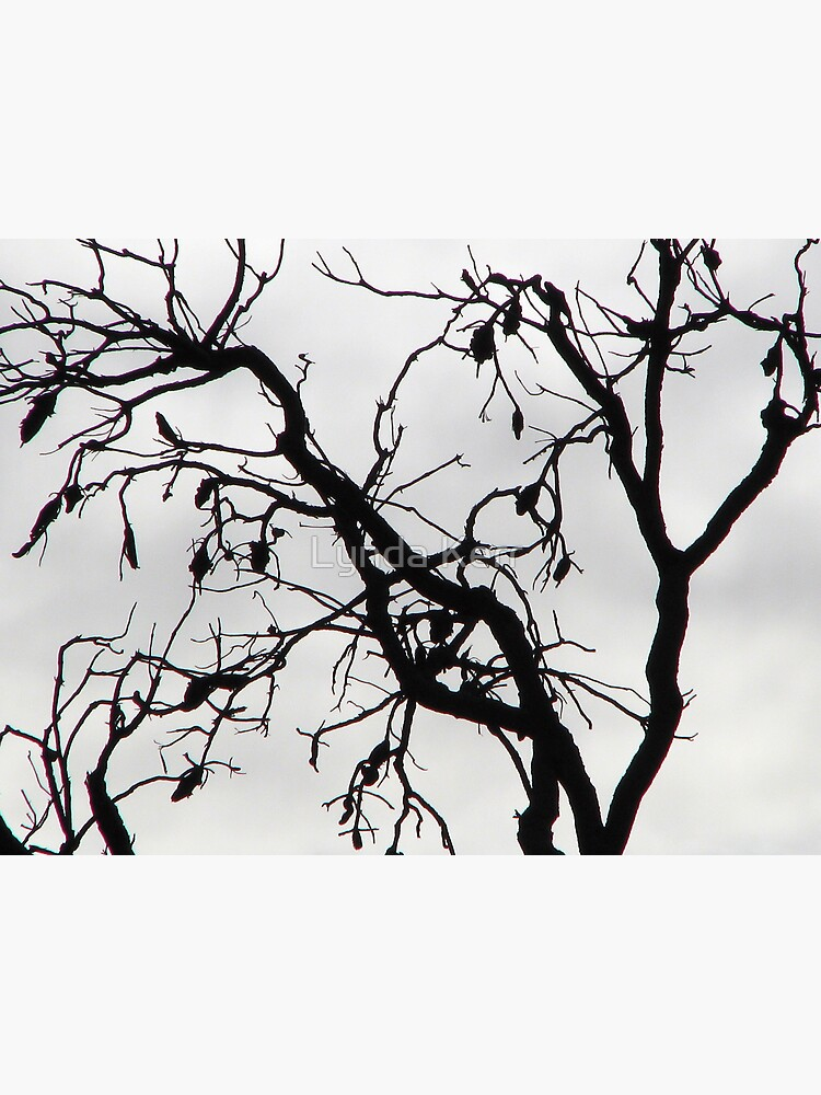 Spooky Tree by 4sure