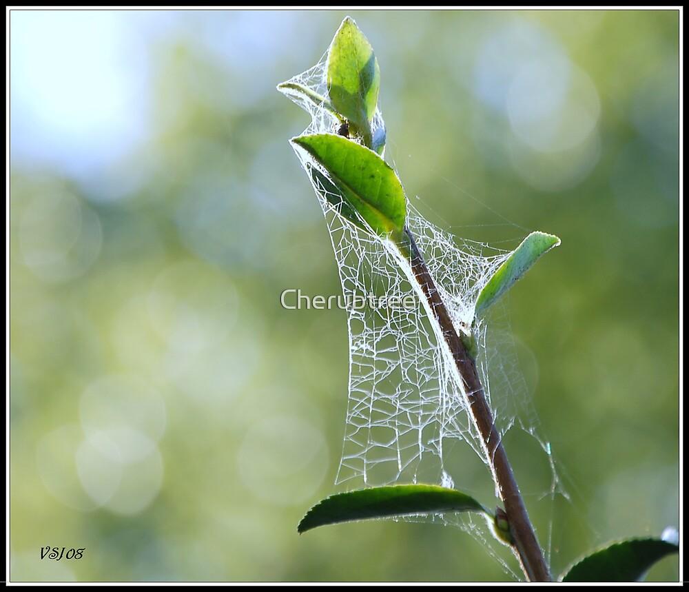 Spider Web Illuminations by Cherubtree