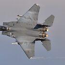 F15E - Black Panther by Simon Pattinson