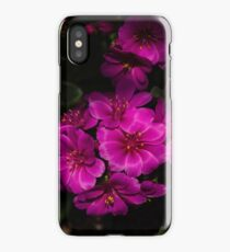 A Vivid Succulent Bouquet in Bold Pink and Fuchsia iPhone Case/Skin