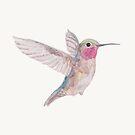 Hummingbird watercolor by Karin Elizabeth