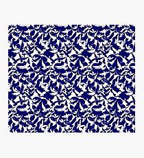 Navy Blue White Doves Photographic Print