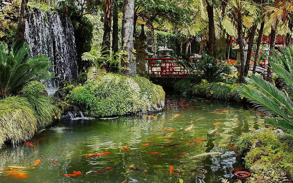 Falls in Monte Palace Gardens Madeira\