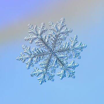 Real snowflake - Hyperion by chaoticmind75
