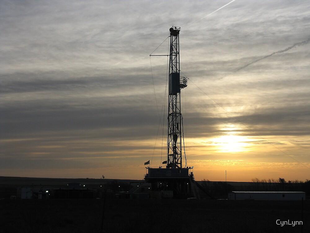 Texas Sunrise by CynLynn