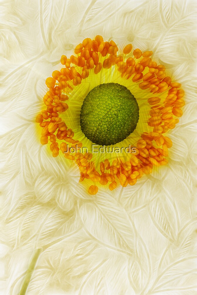 September Charm - A collaboration with Dave Edwards by John Edwards