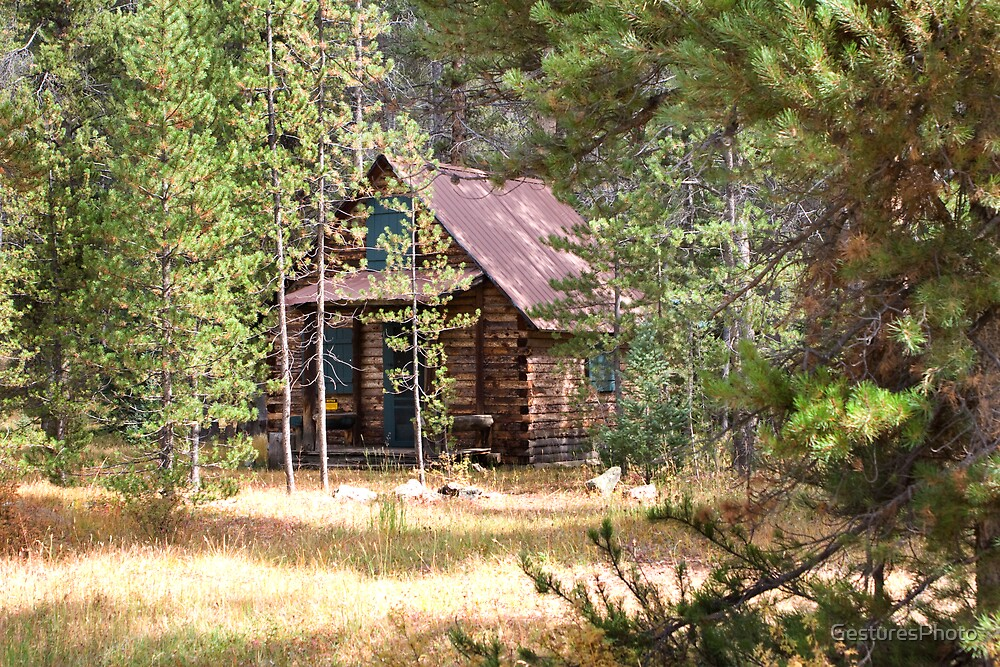 Cabin in the Woods by GesturesPhoto