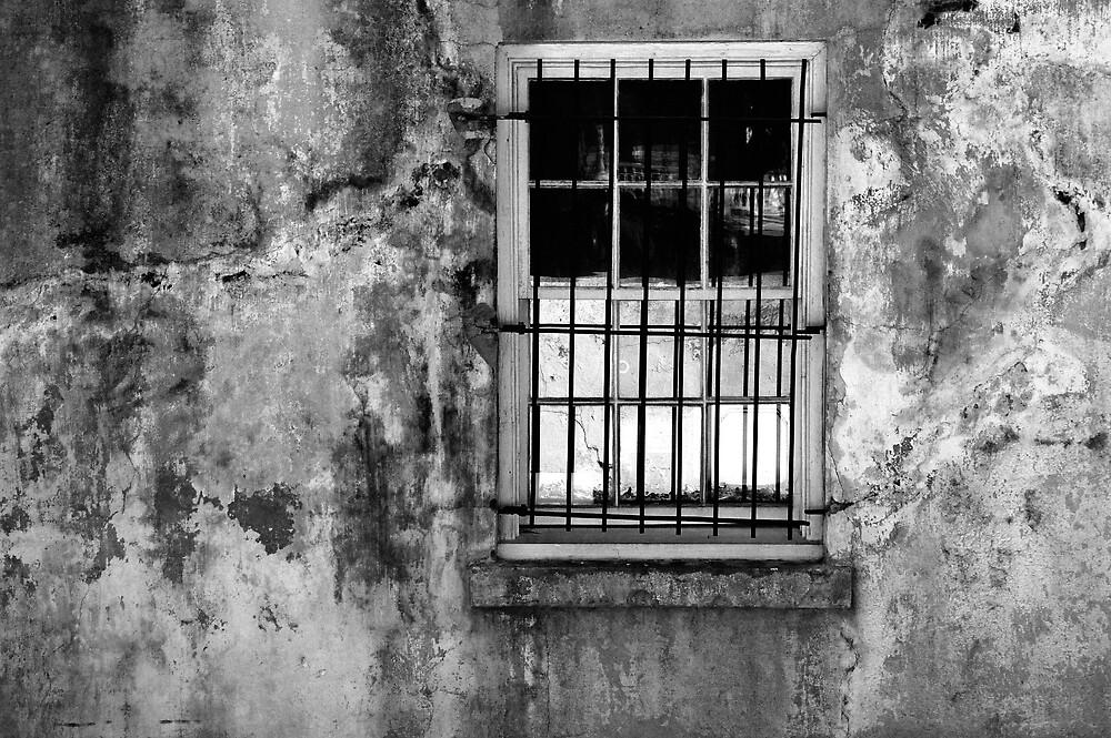 Window, Beaufort, South Carolina by fauselr