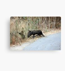 """Does this remind you of   """"Eeyore""""? Canvas Print"""