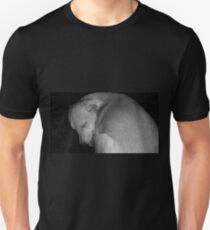 Sweet Dreams my Beautiful Puppy Unisex T-Shirt