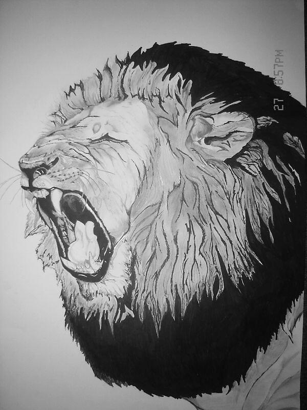 18x24 Lions roar by JeRMsDetail