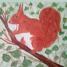 Red squirel on a hazel tree branch by AOertel