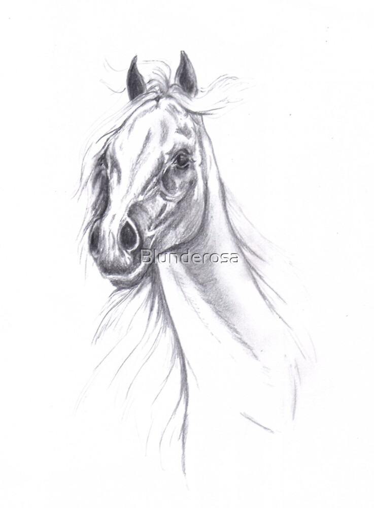 Arabians, ride the wind! by Blunderosa