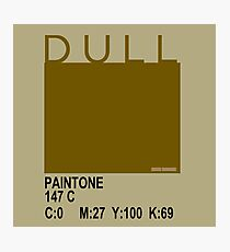 DULL and proud! - 147c Photographic Print