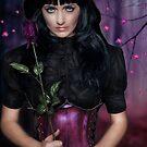 Wild Rose by michellerena