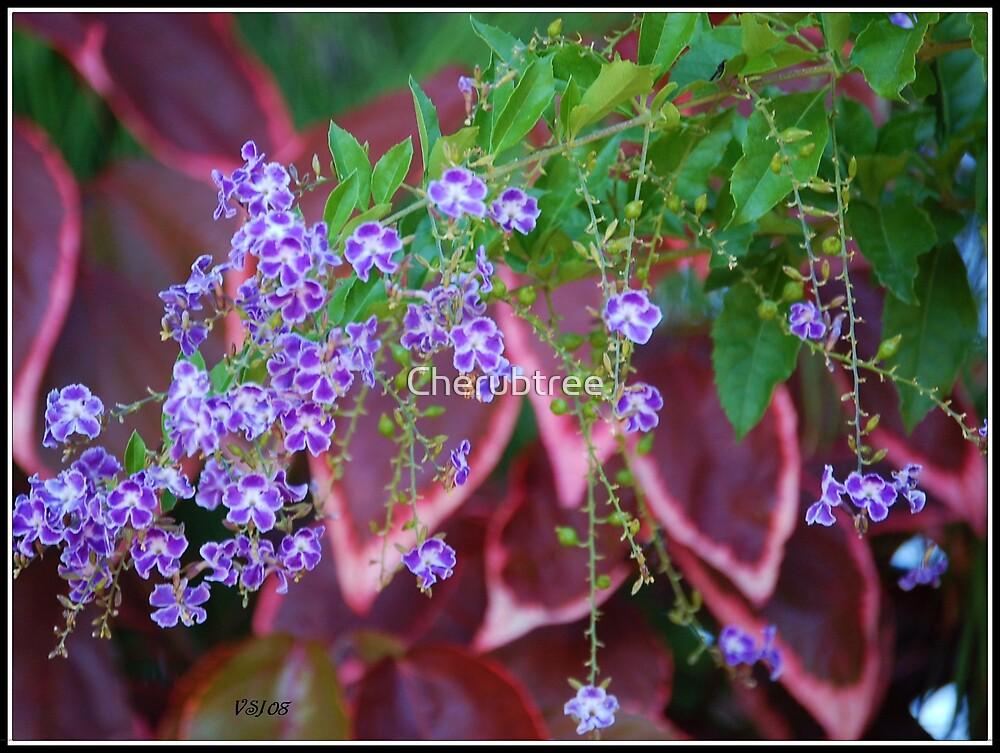 Purple Lace by Cherubtree