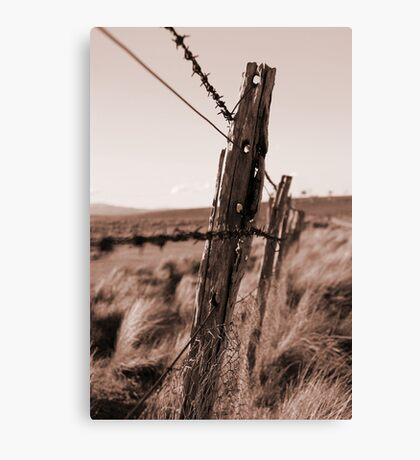 Barbed Fence Canvas Print