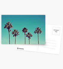 Kalifornische Palmen Postkarten