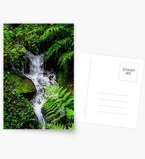 Small Mountain Stream Postcards