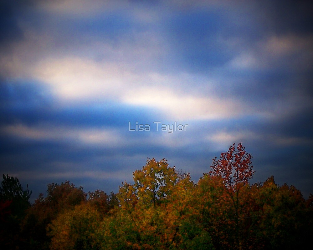 Early Morning Skies by Lisa Taylor
