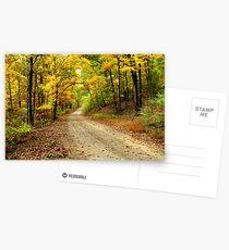 Golden Autumn Road Postcards