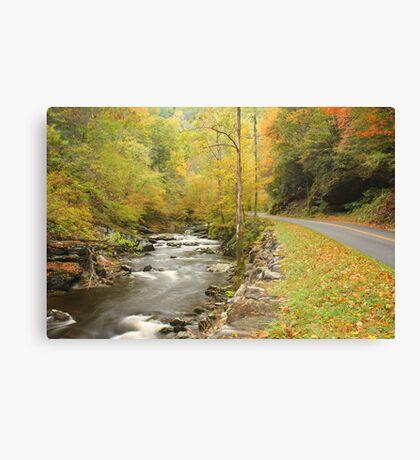 Little River Road Canvas Print