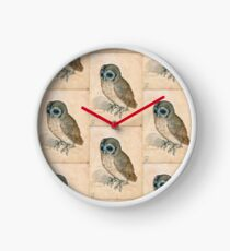 THE OWL Antique Animal Drawings Clock