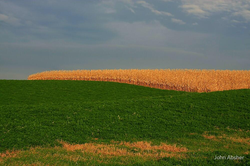 Final Harvest by John Absher