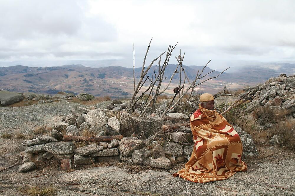Elder by Karen Millard