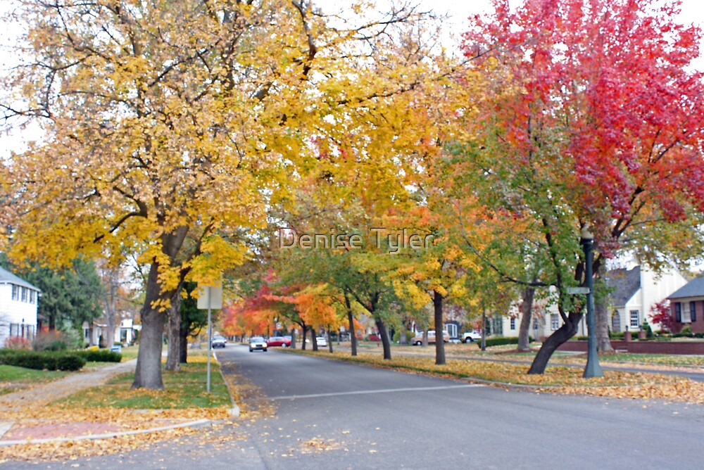 Boise Historic District by Denise Tyler
