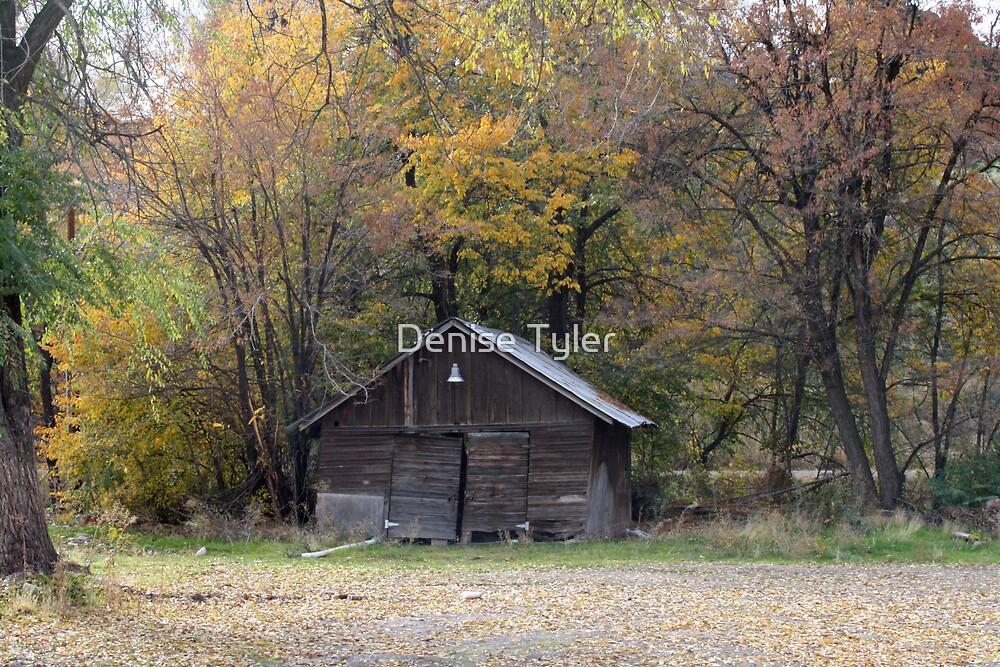 Old Barn- Garden City by Denise Tyler