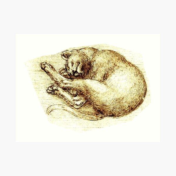 Da Vinci - Cats Art Print
