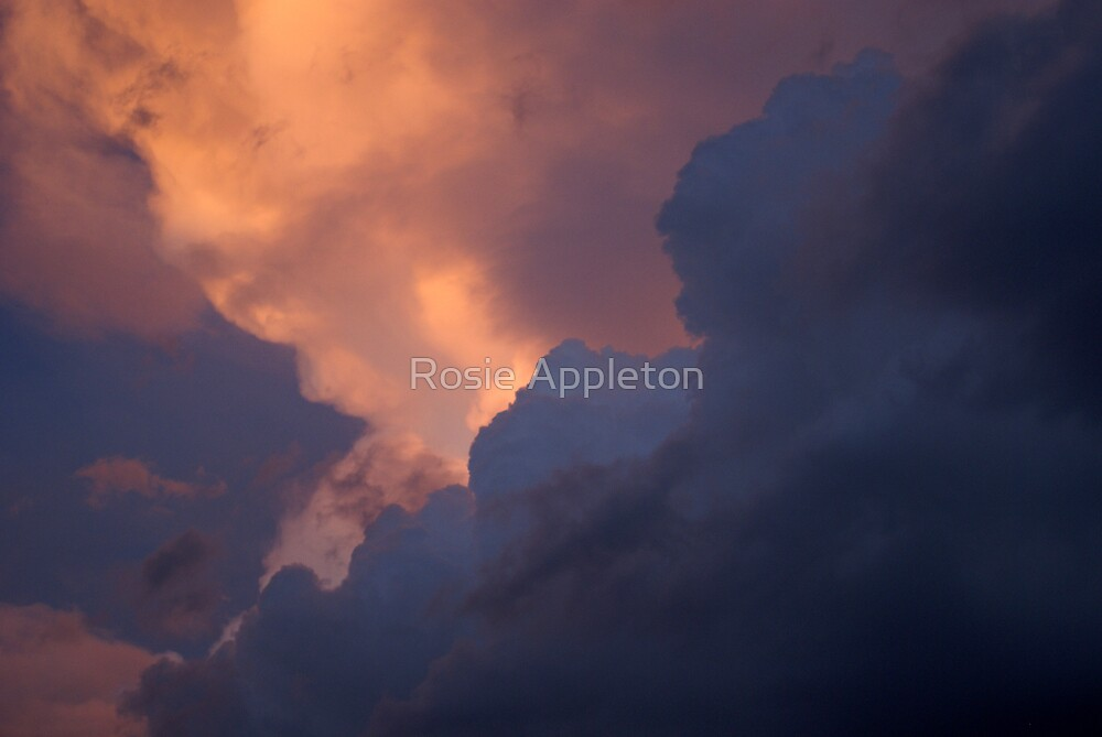 The colour of Heaven by Rosie Appleton