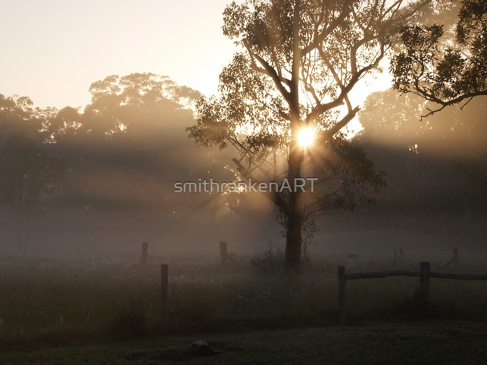 First Light by Bernadette Smith (c) by smithrankenART