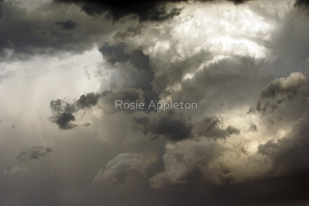 Apocalyptic by Rosie Appleton